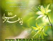 ای گل طه حضرت زهرا