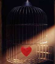 عشق بورز تا آزاد شوی(3)