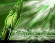 اَللّهُمَّ اَدْخِلْ عَلى اَهْلِ الْقُبُورِ ...
