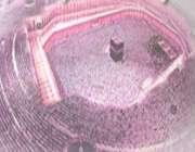 بی نیازی خدا از مجاهدت مجاهدان