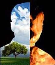 انسان و خالقیت (2)