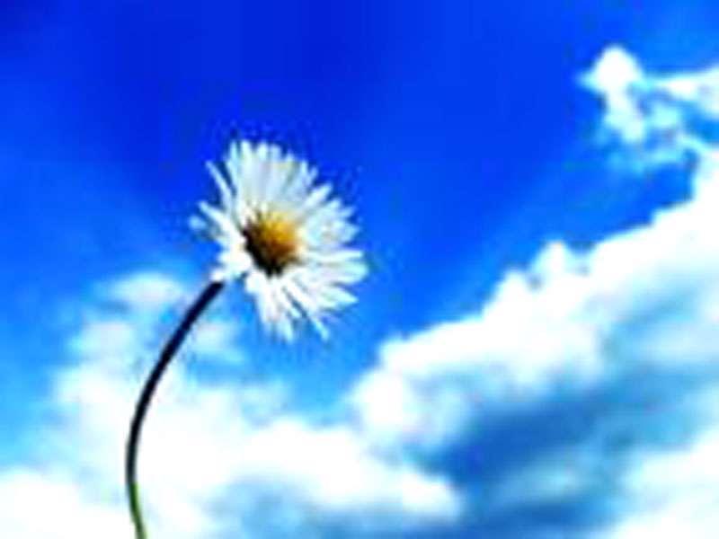 مقتضای فطرت ایمان یا كفر؟(2)