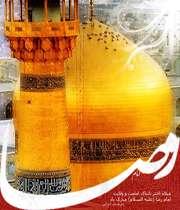 امام رضا، الهی من فدات شم