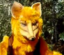 استخدام آقا گرگه و روباه