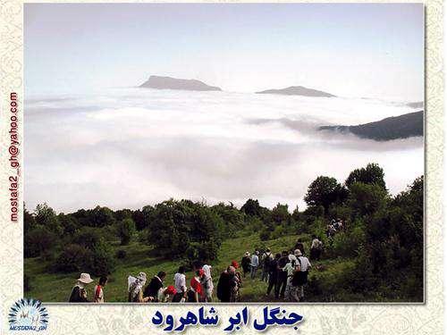جنگل ابر (  mostafa2_gh )