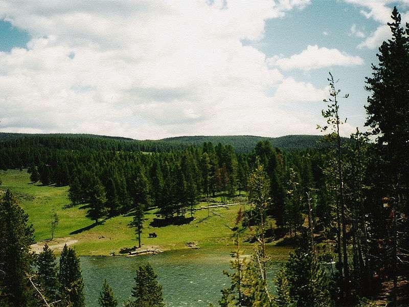پارک جنگلي يلوستون اولين پارک ملي دنيا