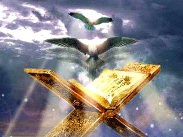 دین، حوزه كرامت انسان