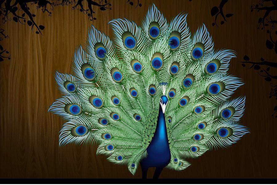نقاشی طاووس روی پارچه طاووس - گنجینه تصاویر تبيان