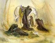 منشأ مخالفت سليمان بن صرد