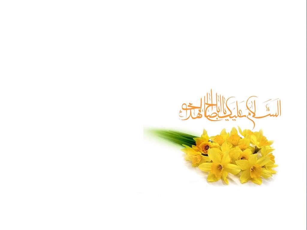 """Vaizdo rezultatas pagal užklausą """"گل نرگس یا مهدی"""""""