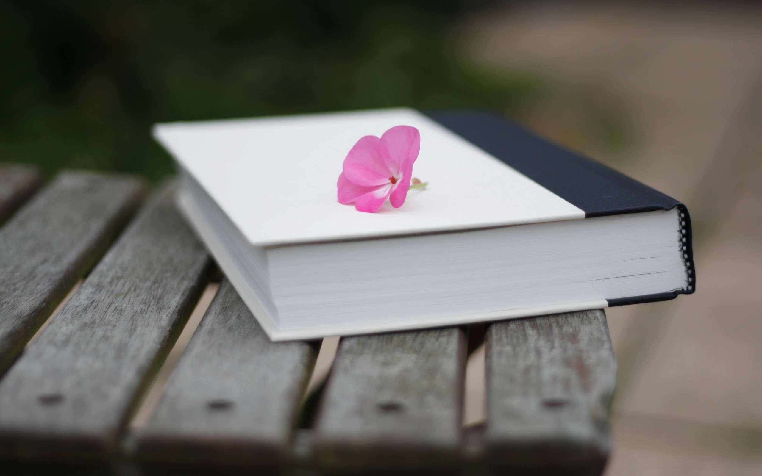 معرفی کاربر برتر هفته تالار کتاب  بالیوود