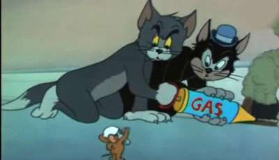 متخصص گرفتن موش