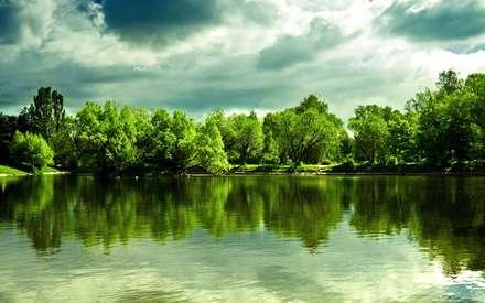 دریاچه ای میان درختان