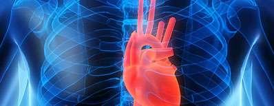 10 عادت غلطی که به قلب آسیب می زنند