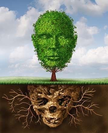 درخت و ریشه