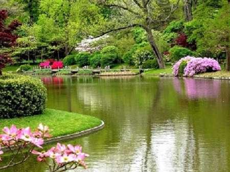 گل باغ بهشت