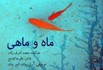 ماه و ماهی