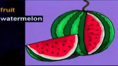 آموزش زبان انگلیسی / میوه ها