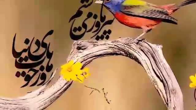 نماهنگ وحدت