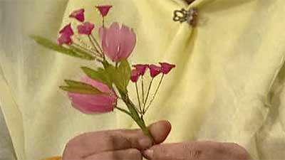 گل کوکب وحشی