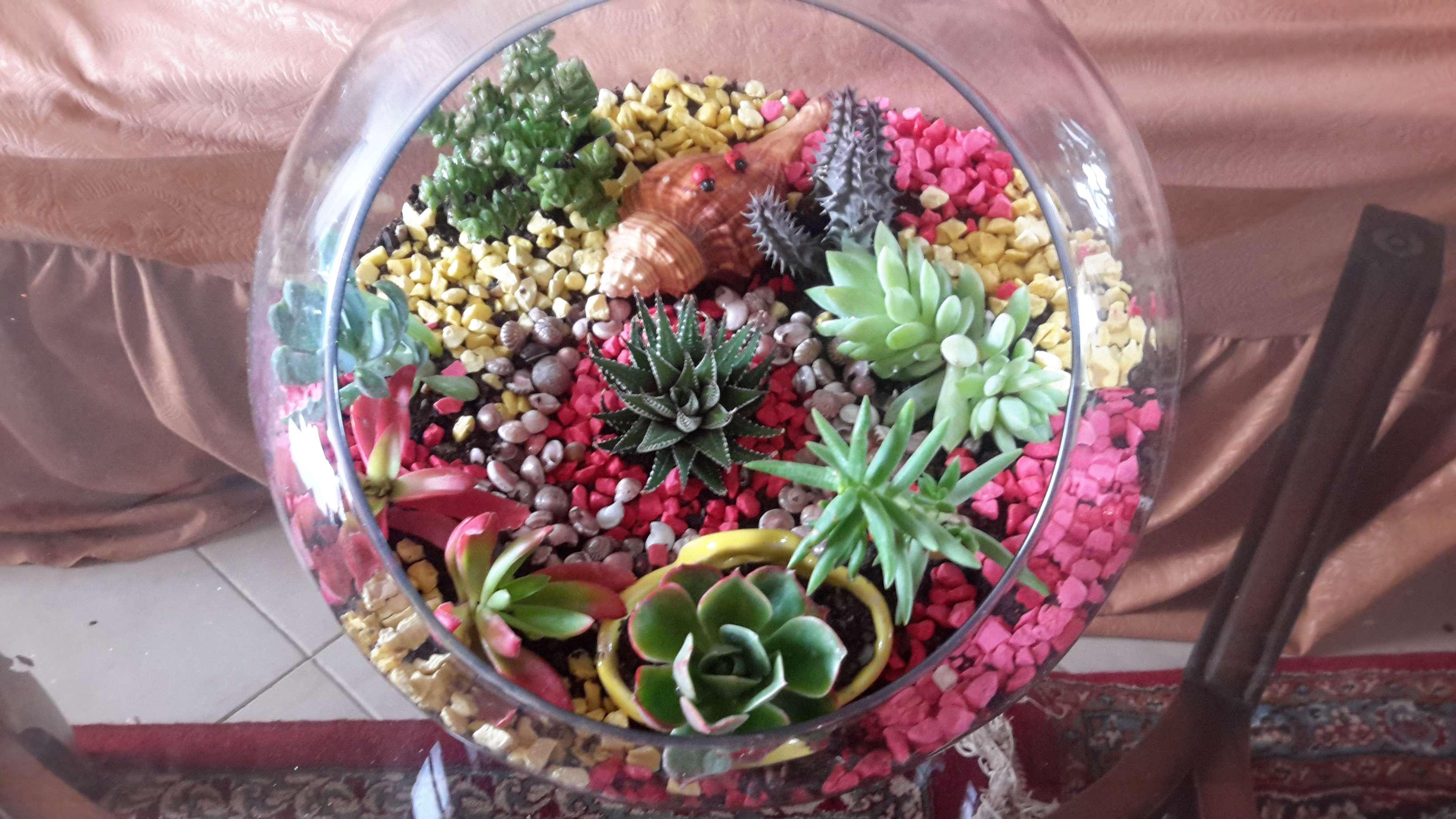 باغ های شیشه ای!