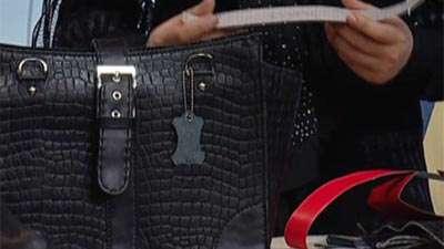کیف سگک دار زنانه _ خانم بروشک (1)