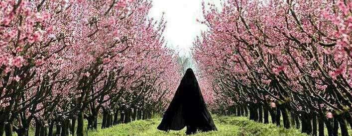 نظر مراجع تقلید درباره حجاب با چادر مشکی!