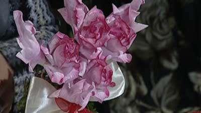 گل رز بلندر