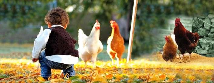 خودخواهی کودک با طبیعت چه می کند؟