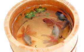 آموزش ساخت تنگ ماهی سه بعدی برای هفت سین
