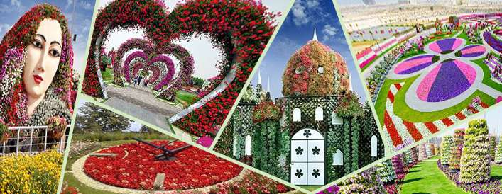 باغ گل معجزه؛ بزرگترین باغ گل دنیا در بیابان های دبی