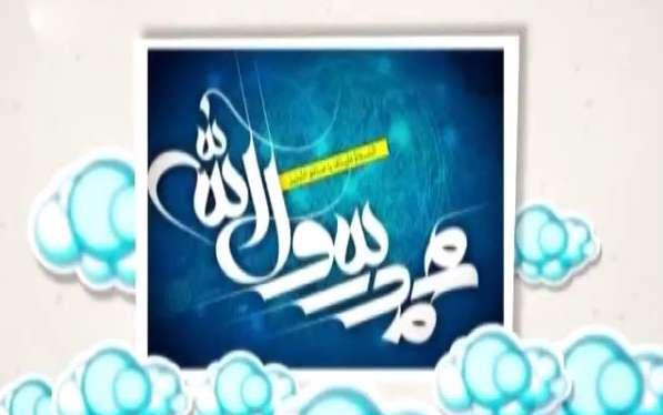 امید روشن بین / گل محمدی