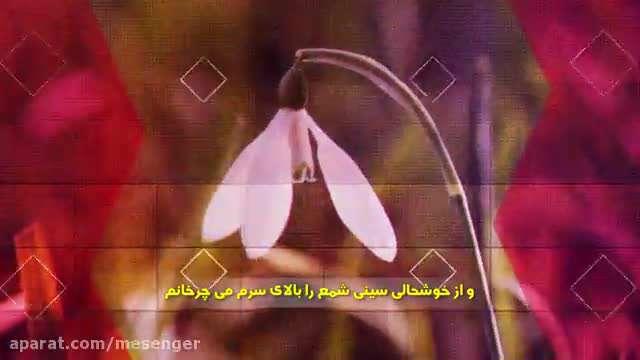 میلاد آیه های نور / ملا باسم کربلایی (زیرنویس فارسی)