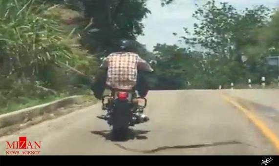 حمله مار به مرد موتورسوار