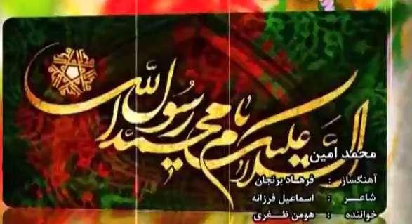 هومن ظفری / محمدامین
