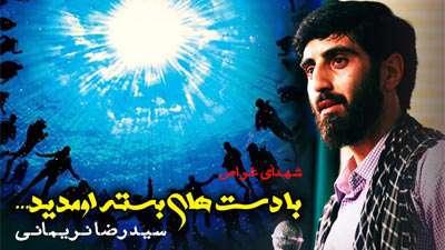 سید رضا نریمانی | شهدای غواص