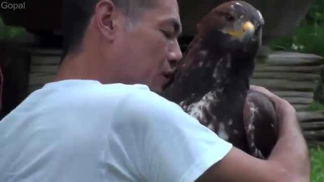 کلیپ زیبا و عاطفی از لحظه بغل کردن حیوانات با انسان ها