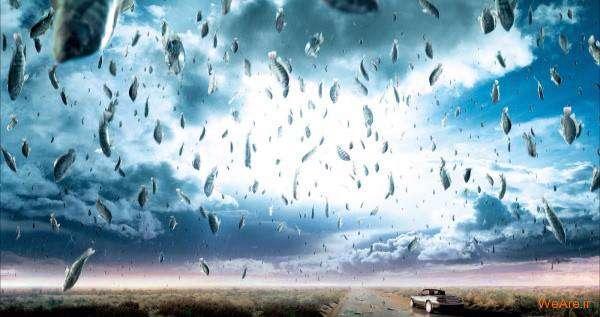بارش ماهی از آسمان