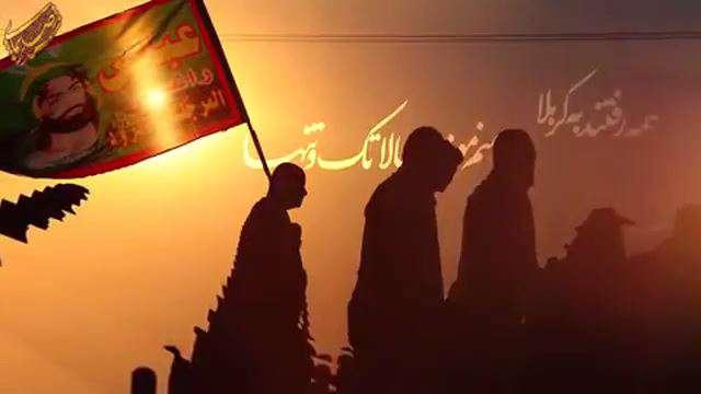 مداحی سید رضا نریمانی برای پیاده روی اربعین - یه عده آقا دارن طی می کنن جاده ها