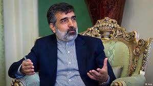اظهارات کمالوندی درباره همکاریهای هستهای ایران و روسیه