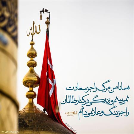 امام حسین ( علیه السلام )