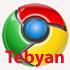 Google Chrome 1.0.154.39 Final