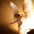 علم فرشتگان به فساد انسان