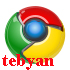 Google Chrome 11.0.696.65 All in one