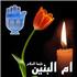 Мать его светлости Абулфазл