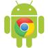 مرورگر گوگل کروم نسخه اندروید، Chrome 26.0.1410.58 Final
