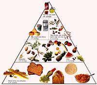 <h1>گروه های غذایی هرم </h1>