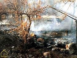 بمباران شیمیایی حلبچه (28اسفند 1366)