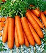 هویج پخته مغذی تر است