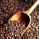 قهوه (COFFEE)